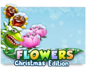 Flowers Christmas Edition Casinospiel kostenlos