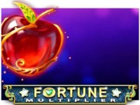 Fortune Multiplier Spielautomat