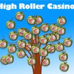 High Roller online Casinos erfahrungen