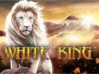 White King Spielautomat