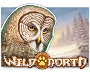 Wild North Video Slot freispiel